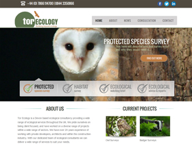 Tor Ecology Website, Totnes, Devon