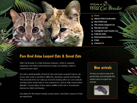 Wild Cat Breeder - Serval & Asian Leopard Cat Breeder, Scotland
